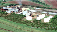 Bioenergia deve ser leiloada com preço mínimo de R$ 245 milhões, divulga o portal NovaCana