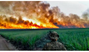 Ministério Público e Polícia Ambiental fazem operação contra incêndio em vegetações