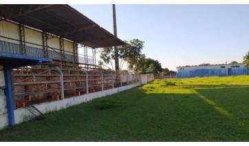 Área interna do Estádio Municipal José de Freitas Cayres, de Lucélia (Cedida/Assessoria de Imprensa/PML).