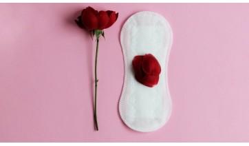 Programa Dignidade Íntima: alunas da rede estadual serão atendidas com produtos de higiene menstrual