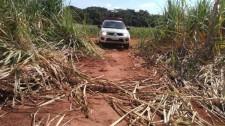 Polícia Ambiental e Ministério Público Estadual encerram operação Huracan