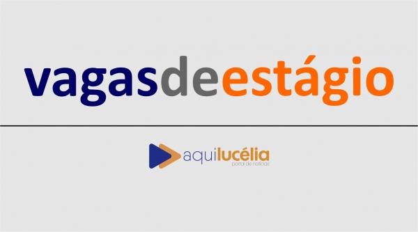 CIEE tem vagas de estágio para estudantes que morem em Lucélia, Adamantina e região