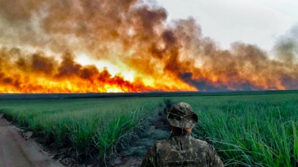 Operação tem como objetivo a prevenção dos focos de incêndio em vegetações (Divulgação).