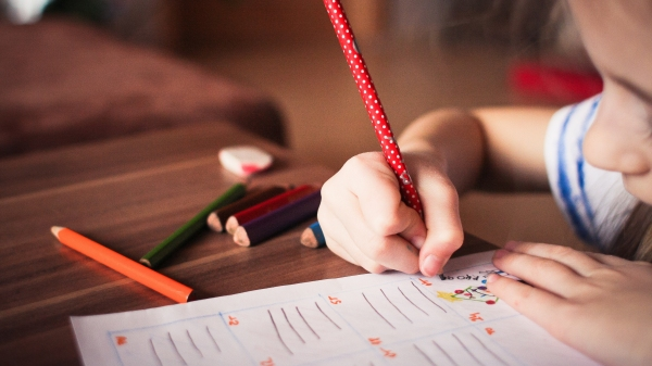 Com a decisão, conteúdo de ensino deverá ser finalizado por meio remoto e plantão de atendimentos aos alunos com dificuldades (Foto: Pexels).